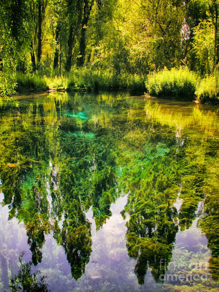 Photograph - Clitunno Springs - Italy by Silvia Ganora