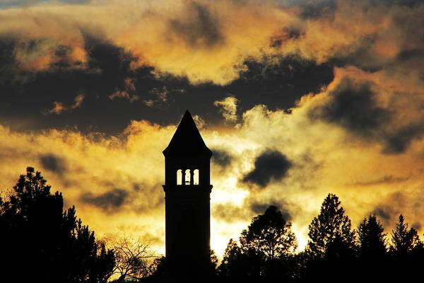 Expo 74 Photograph - Clocktower Silhouette 5418 by Donald Sewell