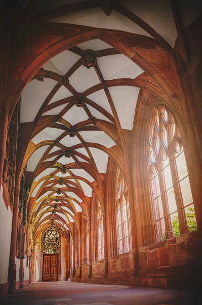 Cloister Photograph - Cloisters Of Basel Munster Switzerland  by Carol Japp