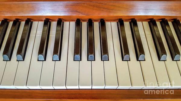 Keyboard Instrument Wall Art - Photograph - Close Up Of Piano Keyboard by Bernard Jaubert