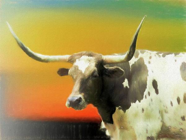Digital Art - Close View Of A Longhorn Cow. by Rusty R Smith