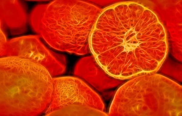 Photograph - Closeup Of Fresh Juicy Satsumas by John Williams