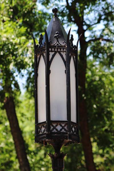 Photograph - Closeup Of Gothic Black Light by Colleen Cornelius