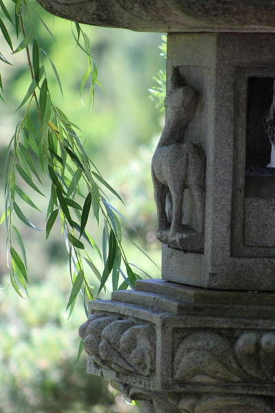 Photograph - Closeup Of Pagoda And Willow Branch by Colleen Cornelius