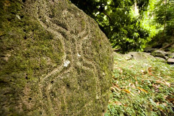 Fatu Hiva Wall Art - Photograph - Closeup Of Petroglyph, Fatu Hiva Island by Tim Laman
