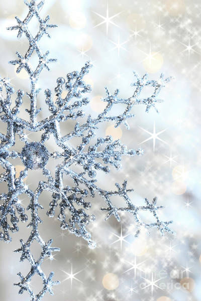 Wall Art - Photograph - Closeup Of Snowflake by Sandra Cunningham