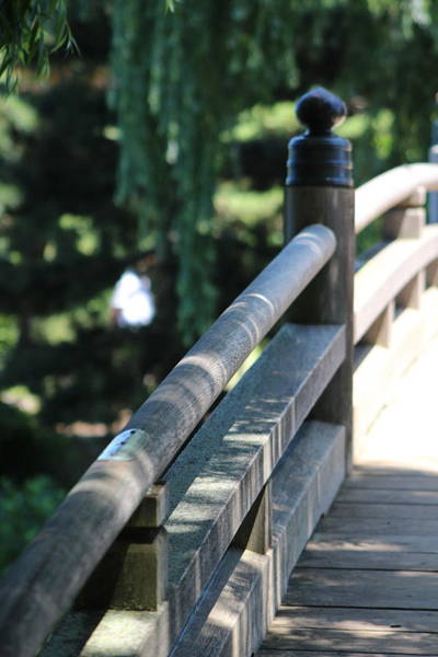 Photograph - Closeup Of Walking Bridge At Chicago Botanical Gardens by Colleen Cornelius