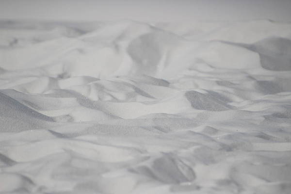 Photograph - Closeup Of White Sands 2 by Colleen Cornelius