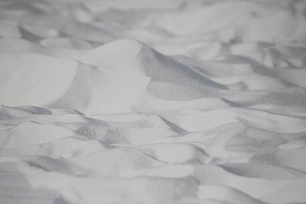 Photograph - Closeup Of White Sands by Colleen Cornelius