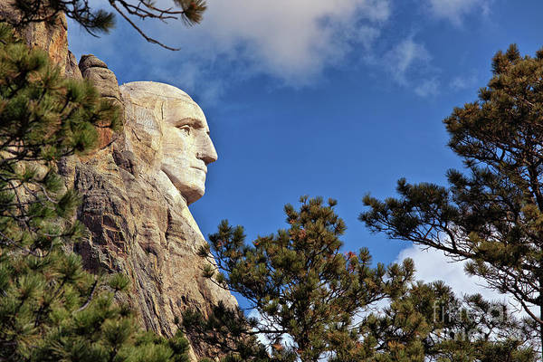 Photograph - Closeup Profile Of George Washington At Mount Rushmore National Memorial In South Dakota by Sam Antonio Photography