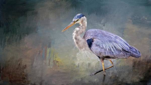 Photograph - Closing-in, Great Blue Heron by Flying Z Photography by Zayne Diamond