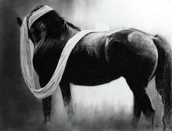 Friesian Drawing - Cloth And Velvet - Friesian by Susie Gordon