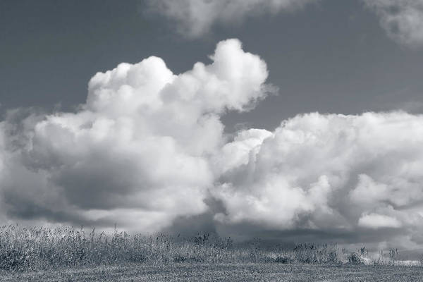Photograph - Cloud #9265 by Andrey Godyaykin