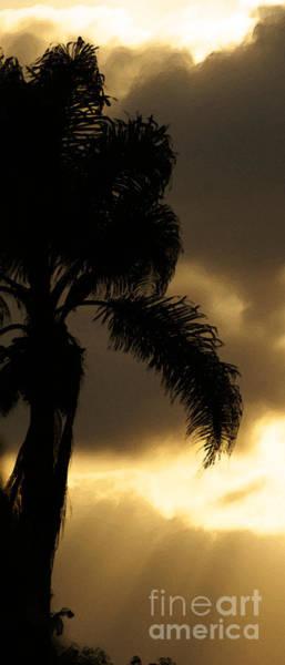 Photograph - Cloud Break by Linda Shafer