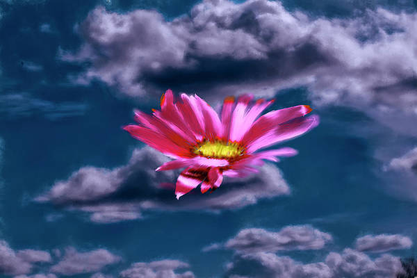Photograph - Cloud Flower.  by Leif Sohlman
