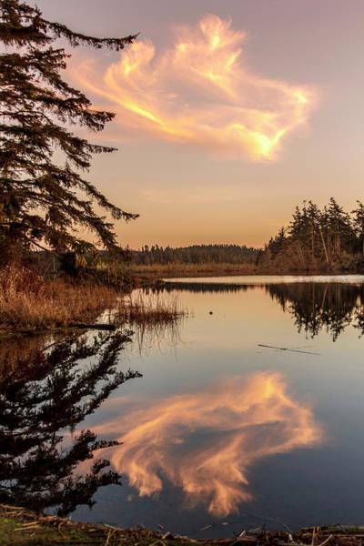 Wall Art - Photograph - Cloud On Cranberry Lake by Tony Locke