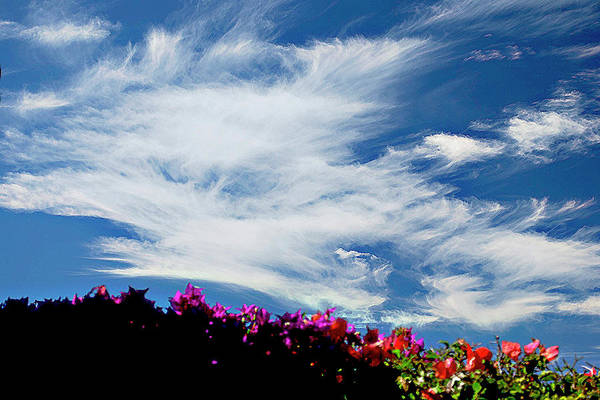 Photograph - Cloud Patterns by Bette Phelan
