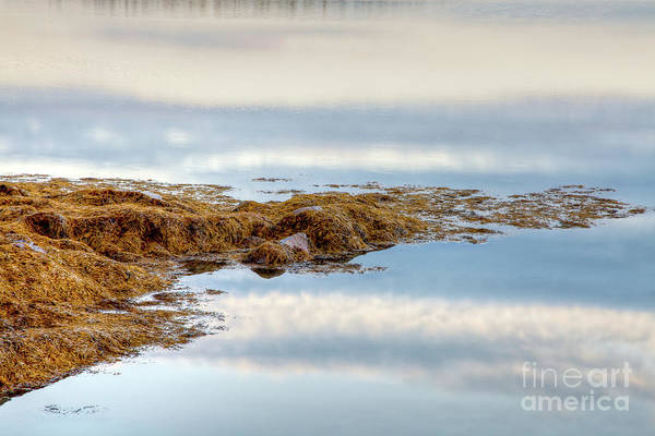 Wall Art - Photograph - Cloud Reflections by Susan Cole Kelly
