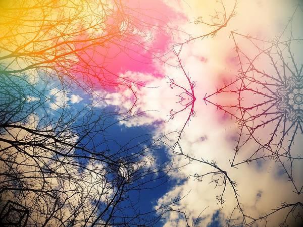 Digital Art - Cloudburst Tree Kaleidoscope by Itsonlythemoon