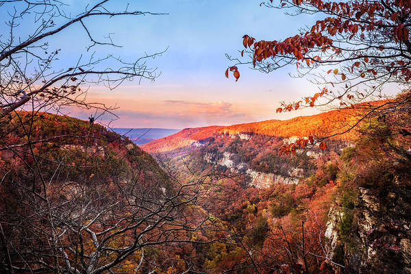 Photograph - Cloudland Canyon by Debra and Dave Vanderlaan