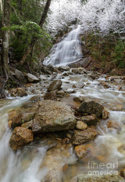 Photograph - Cloudland Falls - Franconia Notch, New Hampshire by Erin Paul Donovan