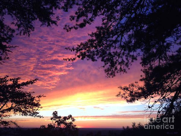 Cloudland Canyon Photograph - Cloudland Sunset by Korrine Holt
