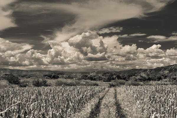 Wall Art - Photograph - Clouds Ahuachapan 16 by Totto Ponce
