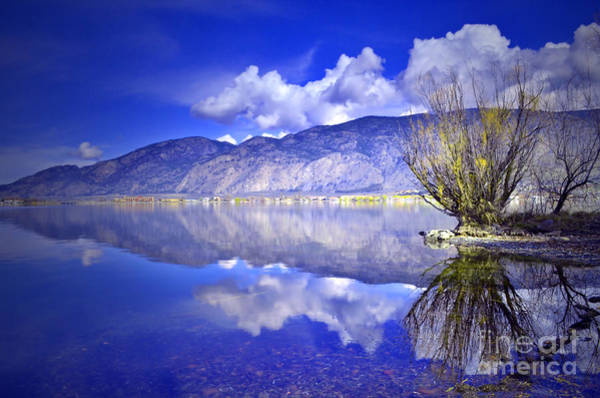 Photograph - Clouds And Clarity by Tara Turner