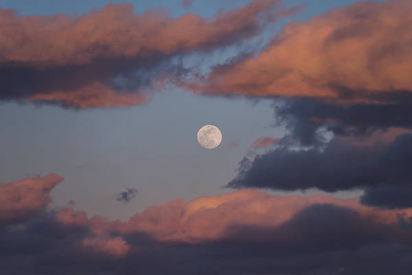 Photograph - Clouds And Moon March 2017 by Terry DeLuco