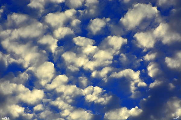 Photograph - Clouds And Sky by Lisa Wooten