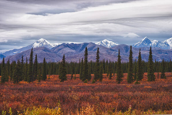 Photograph - Clouds Of Denali National Park by Jeff Folger