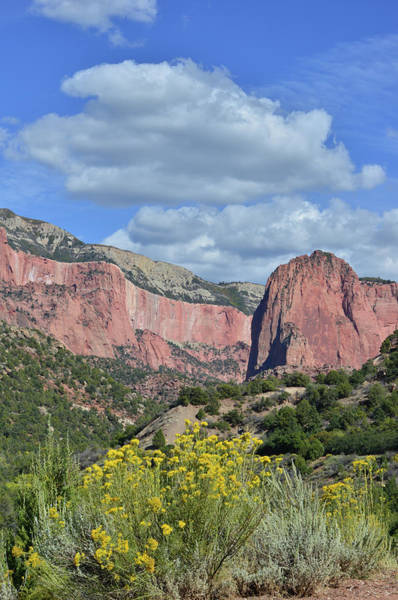 Photograph - Clouds Over Kolob Canyon Terrace by Ray Mathis