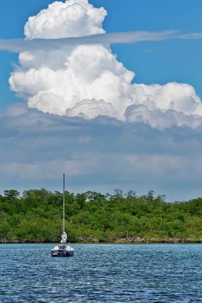 Photograph - Clouds Over The Mangroves In Key West by Bob Slitzan