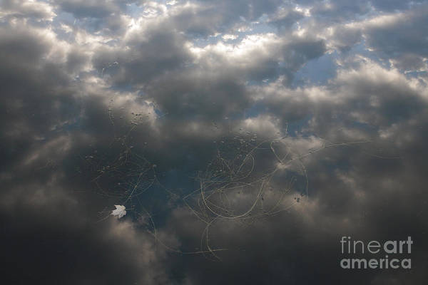Wall Art - Photograph - Clouds Reflected On Water On A Lake by William Kuta