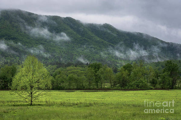 Photograph - Clouds Rolling In by Andrea Silies