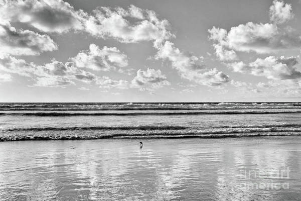 Wall Art - Photograph - Cloudy Afternoon At Torrey Pines Beach, San Diego, California by Julia Hiebaum