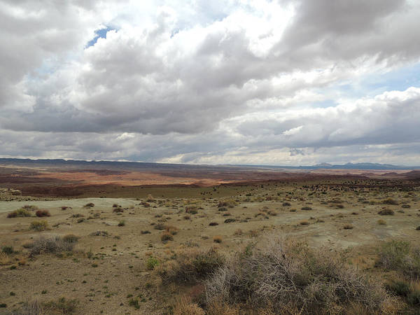 Photograph - Cloudy Desert Study by Andrew Chambers