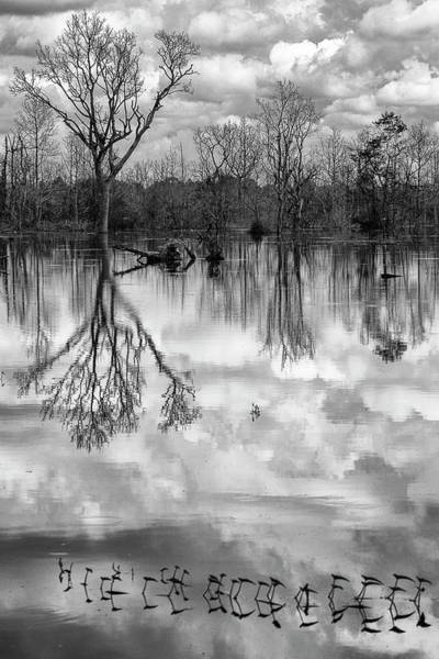 Photograph - Cloudy Reflection by Hitendra SINKAR