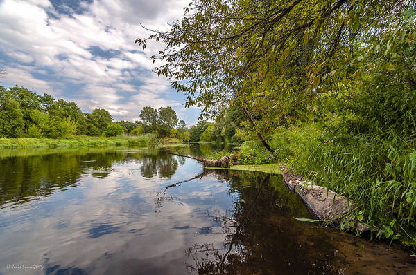 Photograph - Cloudy River by Julis Simo