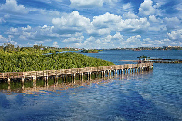 Photograph - Cloudy Skies Over The Intracoastal Waterway by Lynn Bauer