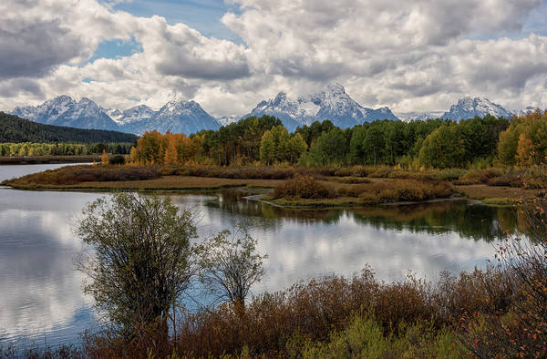 Photograph - Cloudy Tetons by Loree Johnson