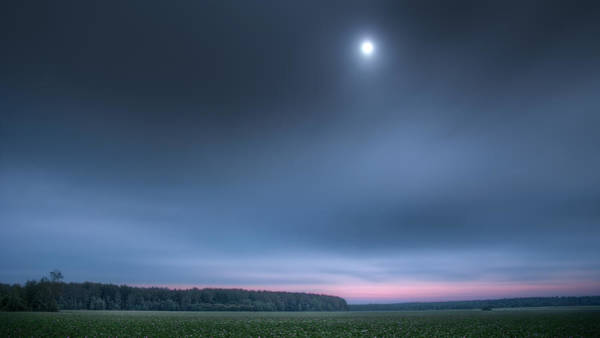 Photograph - Clover Field Under Moon by Alexey Kljatov