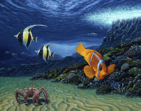 Annenberg Painting - Clown Fish by Andrew Annenberg