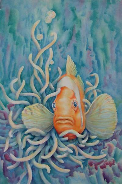Clownfish Painting - Clown Fish by Mary Lillian White