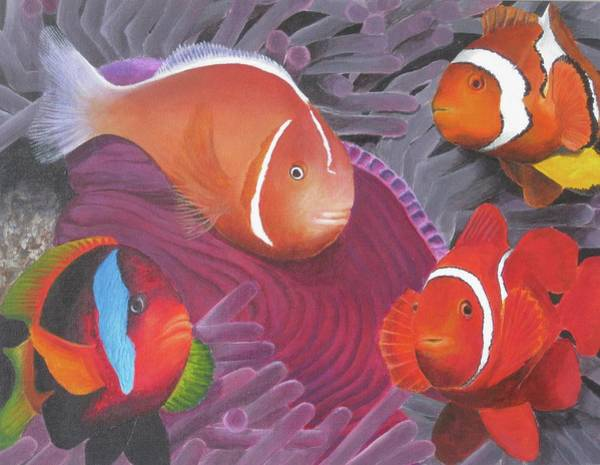 Clownfish Painting - Clownfish     by Regina Brereton