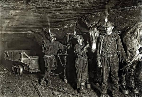 Coal Mining Photograph - Coal Mine Mule Drivers  1908 by Daniel Hagerman