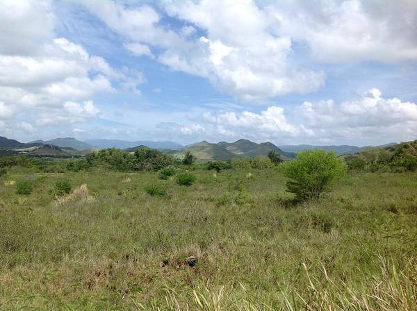 Photograph - Coamo Mountains by Walter Rivera Santos