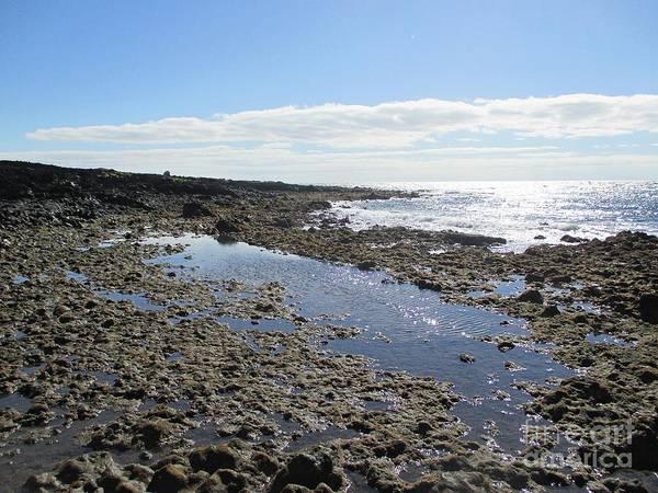 Photograph - Coast At Malpais De Guimar by Chani Demuijlder