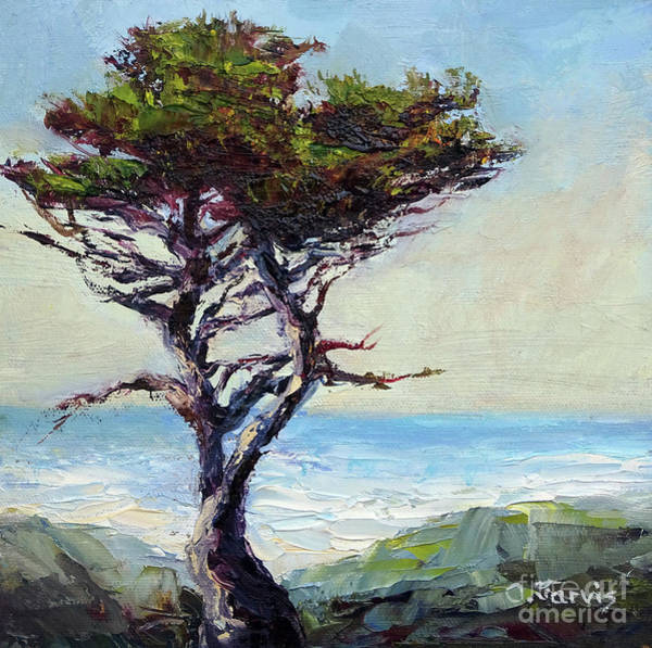Painting - Coast Cypress by Carolyn Jarvis