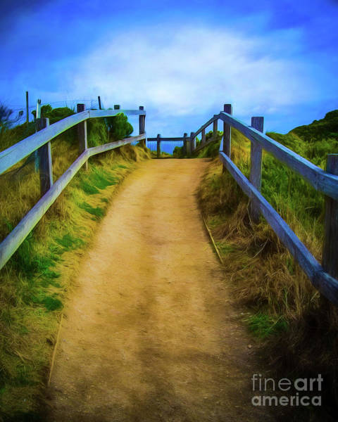Wall Art - Photograph - Coast Path by Perry Webster